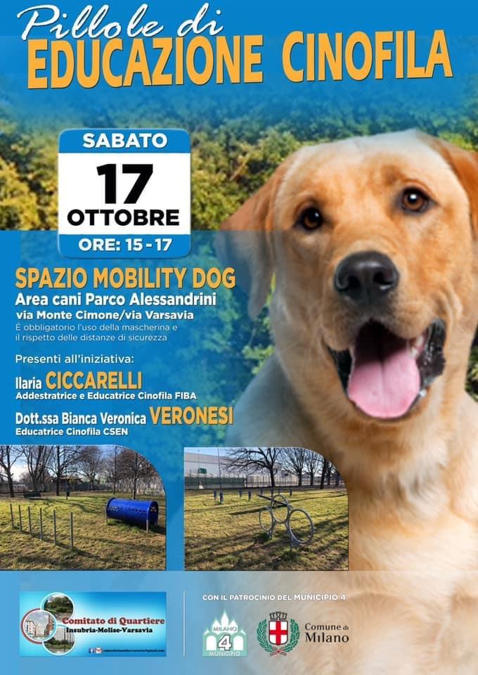SPAZIO MOBILITY DOG